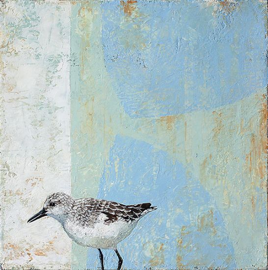 """Sanderling"" Oil on canvas, 12"" x 12""<br /><strong>- SOLD -</strong>"