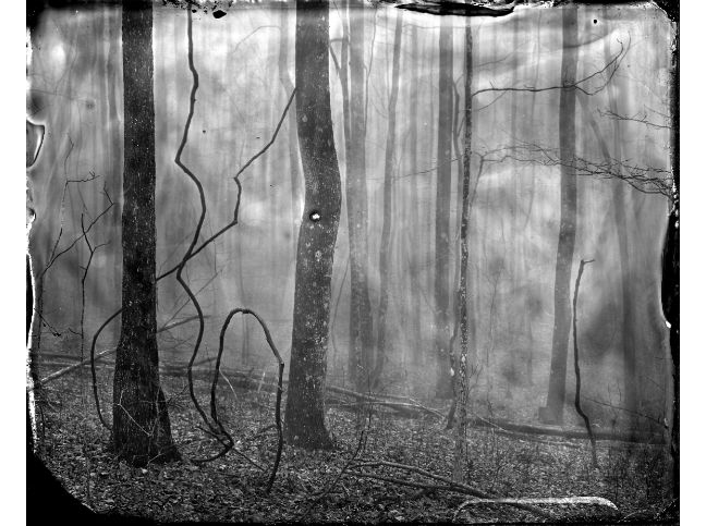 """""""Sassafras Mountain"""" toned gelatin silver print, 20"""" x 16""""<br /><strong>- <a class=""""inquireLink"""" href=""""JavaScript:newPopup('http://thehaengallery.com/inquiry-form/?subject=Ben Nixon: Sassafras Mountain');"""">Please inquire</a> -</strong>"""