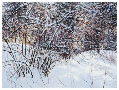 """February Snow"" acrylic on canvas, 48"" x 36"", $3900<br /><strong>- <a class=""inquireLink"" href=""JavaScript:newPopup('http://thehaengallery.com/inquiry-form/?subject=Angelita Surmon: February Snow');"">Please inquire</a> -</strong>"