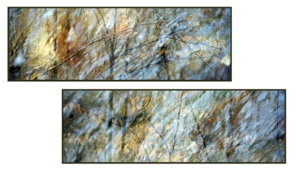 """Cycle"" resin-coated pigment print on canvas, birch panel,<br />framed, 66"" x 22"" ea, $7200 for diptych- <strong>- <a class=""inquireLink"" href=""JavaScript:newPopup('http://thehaengallery.com/inquiry-form/?subject=Chris Foley: Cycle');"">Please inquire</a> -</strong>"