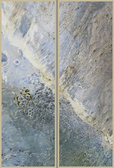 """Inland Reef"" resin-coated pigment print on canvas, birch panel, <br />framed, 16"" x 48"" ea, $3600 for diptych- <strong>- <a class=""inquireLink"" href=""JavaScript:newPopup('http://thehaengallery.com/inquiry-form/?subject=Chris Foley: Inland Reef');"">Please inquire</a> -</strong>"